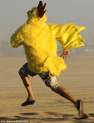chicken470x647